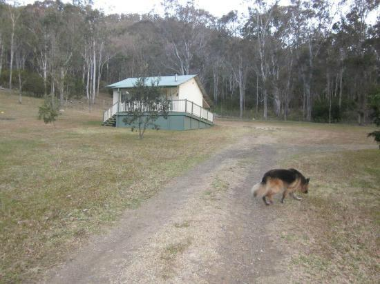 Goomburra Forest Retreat: View walking up the driveway to the cottage