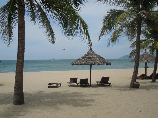 Palm Garden Beach Resort & Spa: The sea is fantastic to swim in!