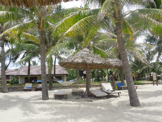 Palm Garden Beach Resort & Spa: Bungalows on the beach