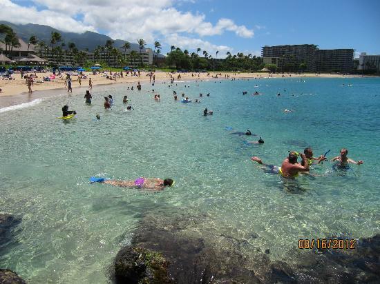 Ka'anapali Beach : Beach by Sheraton Maui
