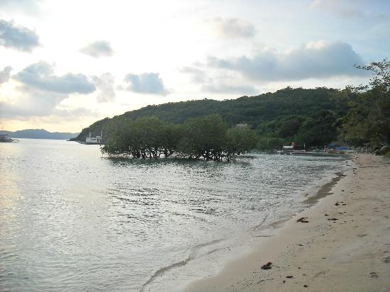 Two Seasons Coron Island Resort & Spa: Sunrise and mangroves