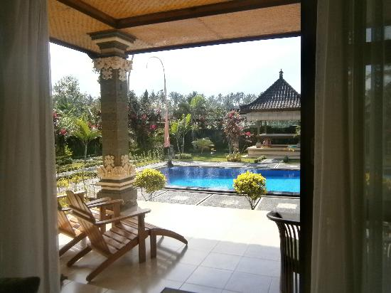 Villa Agung Khalia: Pool from lounge