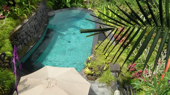 Bidadari Private Villas & Retreat: our pool