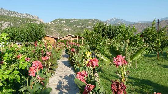 Almira Butik Hotel: Gartenanlage