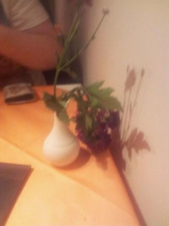 Yu Restaurant: Wilted Carnations on table