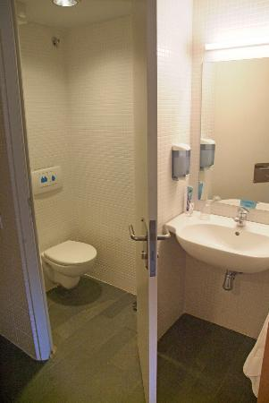 MonNatura Pirineus: Toilet and washbasin