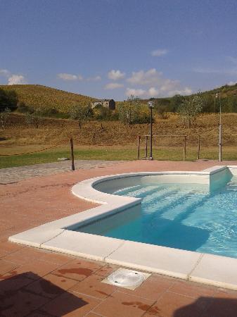 Agriturismo La Locanda dell'Olmo : Ecco la piscina! Luogo del relax! :)