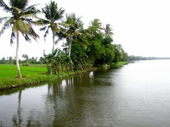 Maria Heritage Homes and Spa: Kuttanad