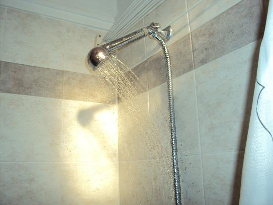 Aegean Aparthotel: Shower that you cant get under!