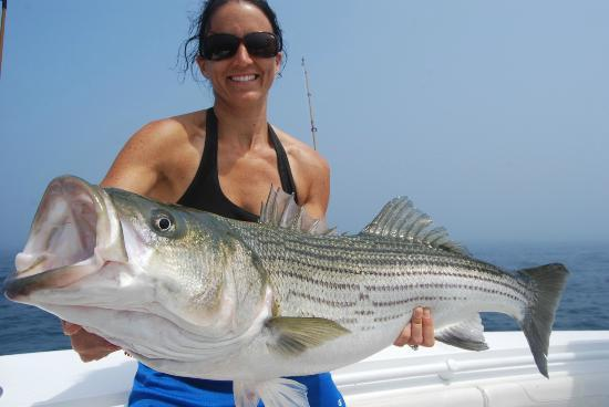 Truro, MA: Beautiful Summer Stripers