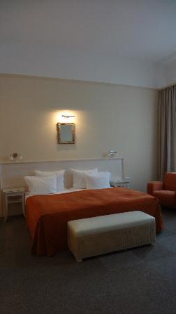 Unitas Hotel: Spacious Room