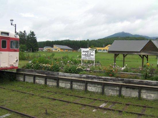 Nishiokoppe-mura, Japan: 駅舎(資料館から)ホーム方向