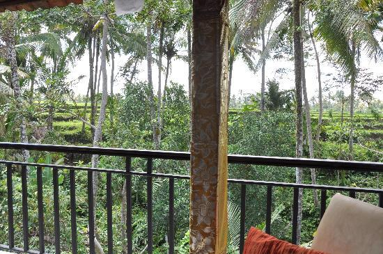 Mulawarman Ubud Bali : enjoy the valley view from our Terrace room