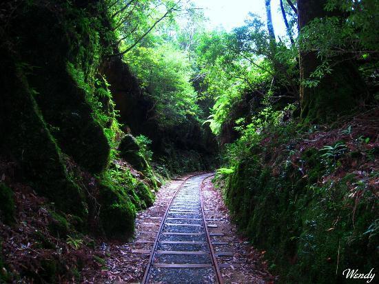 Jomonsugi: トロッコ軌道 