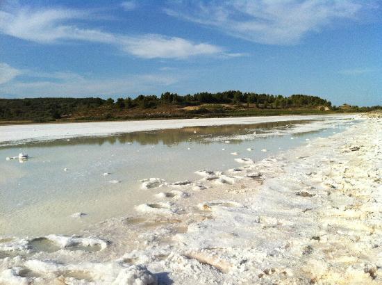 La Corbiere: L'étang de Bages