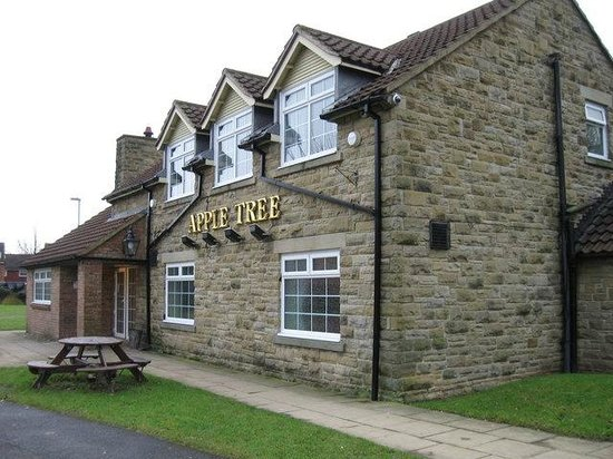 The Apple Tree Pub:                   View from the road
