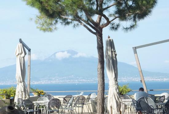 Grand Hotel Ambasciatori: VIEW OF VESUVIUS FROM GARDENS