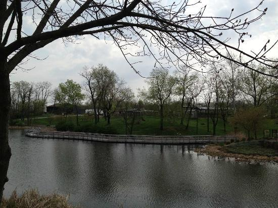 Easter Reminder Picture Of Creation Museum Petersburg