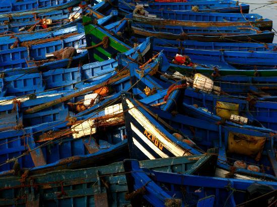 Essaouira Ramparts: Fishing fleet