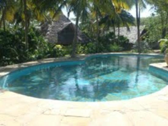 Shambani Cottages: The pool and the cottage behind