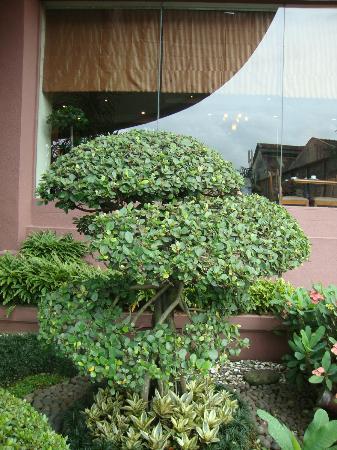 Grand Aquila Hotel Bandung: Entrada al hotel
