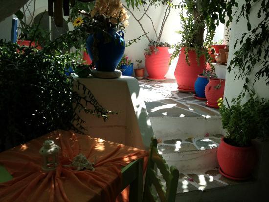 Arian Hotel: Giardino interno