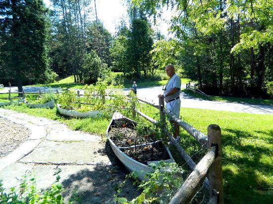 Pocono Environmental Education Center: Boy Scout garden was neat repurposing old canoes