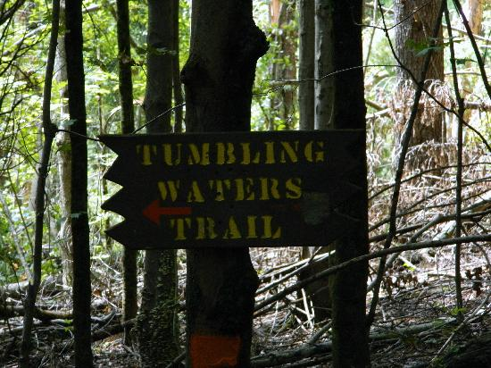 Pocono Environmental Education Center: Trail signage