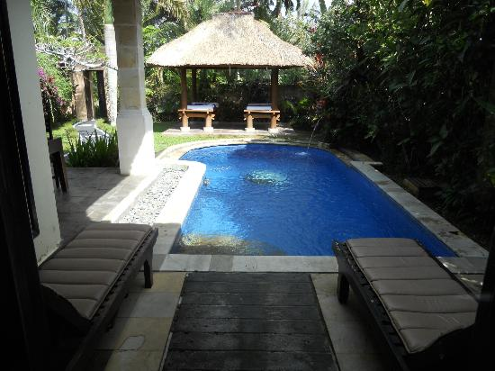 Furama Villas & Spa Ubud: View from bathroom to your pool!