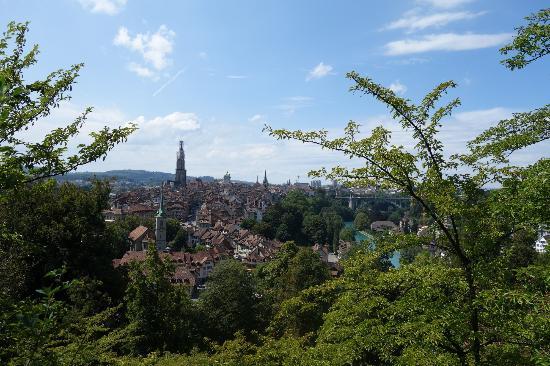 Rose Garden (Rosengarten): ベルン ばら公園からの眺望