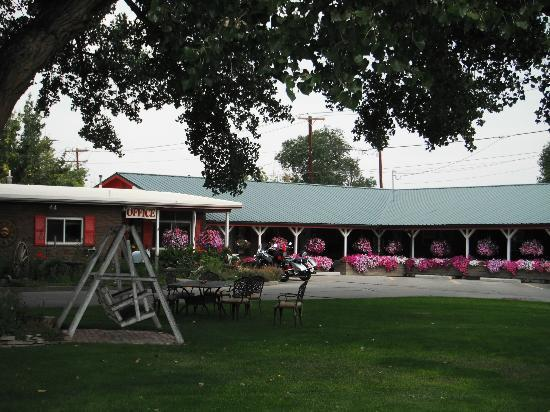 Greybull Motel: Swing