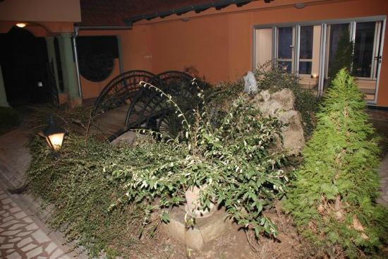 Car Hotel: garden at night