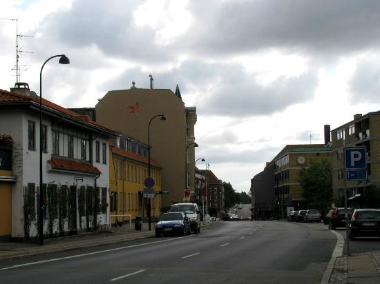 Gentofte Hotel: Hotel and surrounding area