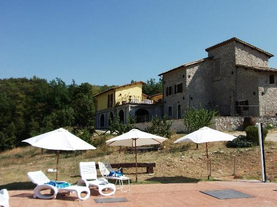 Il Gelso Country House : il gelso
