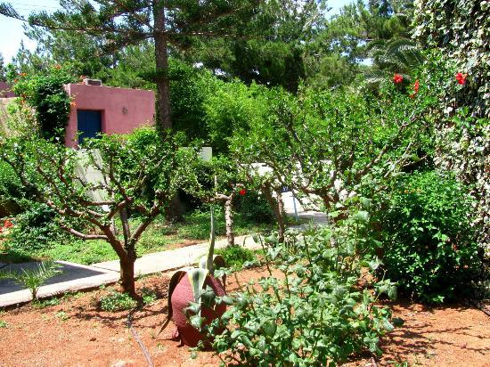 Amoudara, Yunani: Территория бунгало
