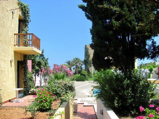 Amoudara, กรีซ: Территория отеля