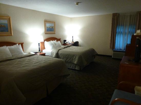 Comfort Inn: Room