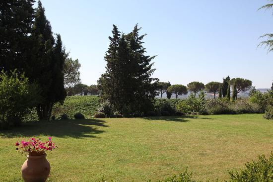 La Palazzetta del Vescovo: The garden