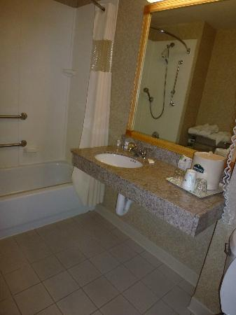 Wingate by Wyndham Streetsboro/Cleveland Southeast: Bathroom