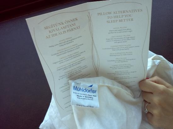 Menu Dei Cuscini.La Carta Dei Cuscini Pillow Menu Picture Of Intercontinental