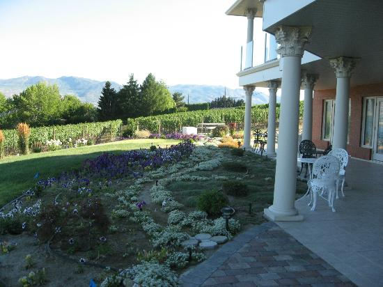 De Rosa Vineyard Bed and Breakfast: DeRosa B+B terrace