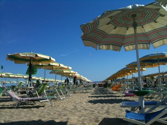Aurea Hotel Tortoreto Lido: Spiaggia