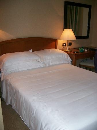Hotel Apogia Lloyd Roma: La camera