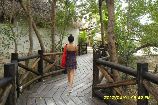 Xaloc Resort: entrada a Xaloc