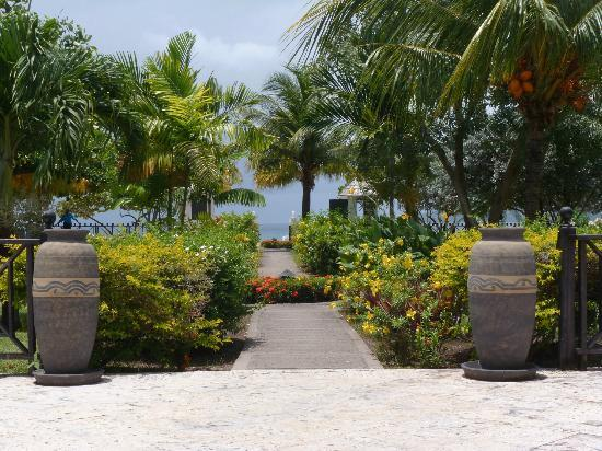 Coyaba Beach Resort : Gardens