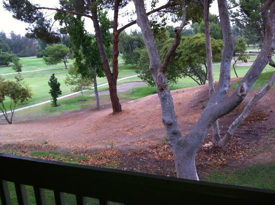 Temecula Creek Inn: View from our room of the neglected grounds