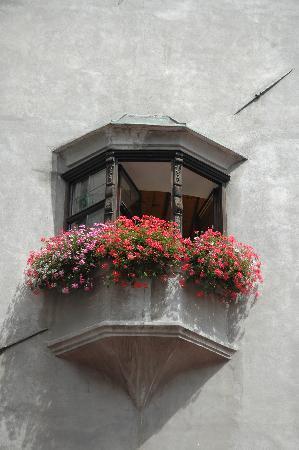 Hall in Tirol, Austria: Window of Town Hall