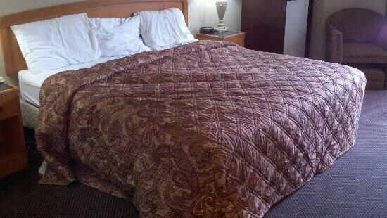 Red Roof Inn & Suites Detroit - Lincoln Park: Example of the poor housekeeping