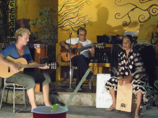 Weary Traveler Hostel: Flamenco Night
