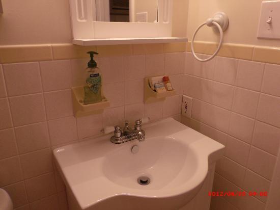 Hamilton House Condominiums: Clean modern bath fixtures
